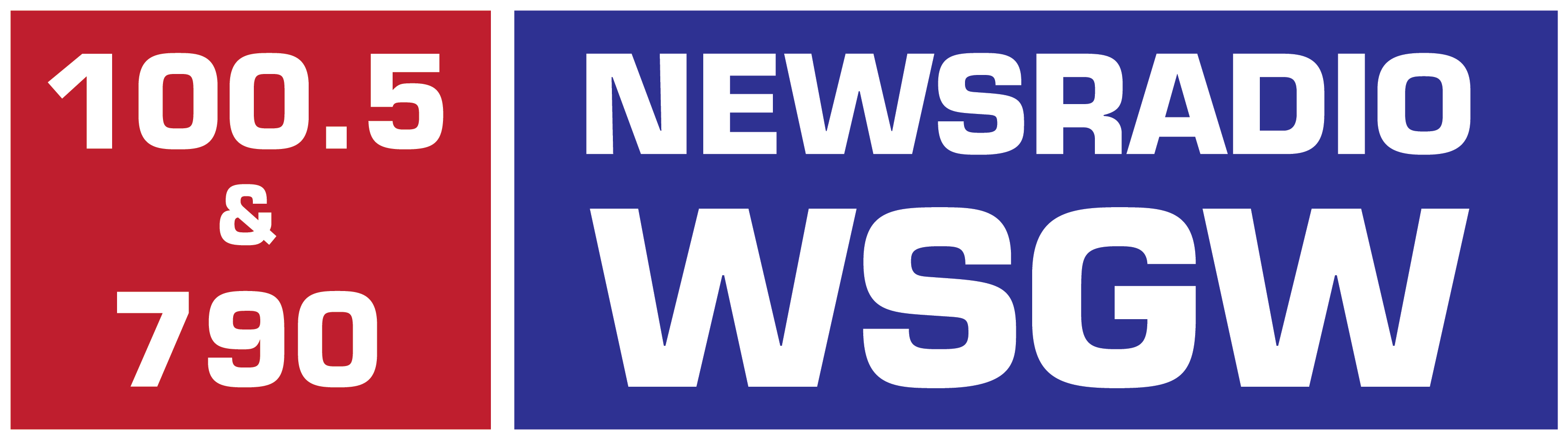 WSGN Logo